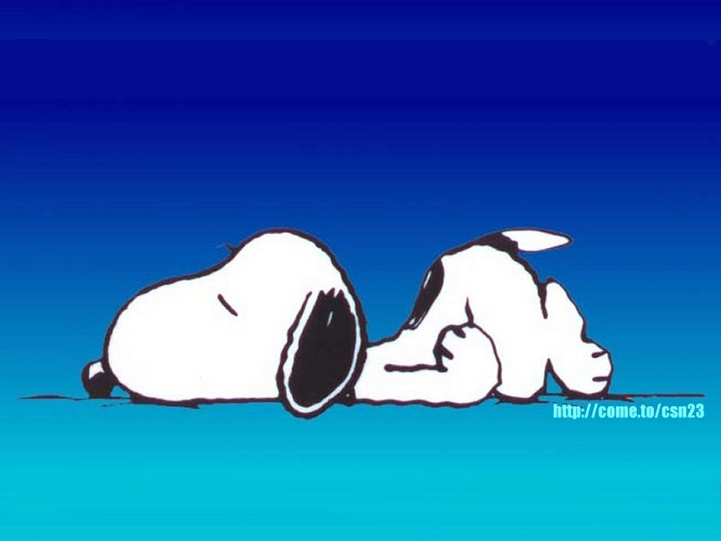 snoopy sleep