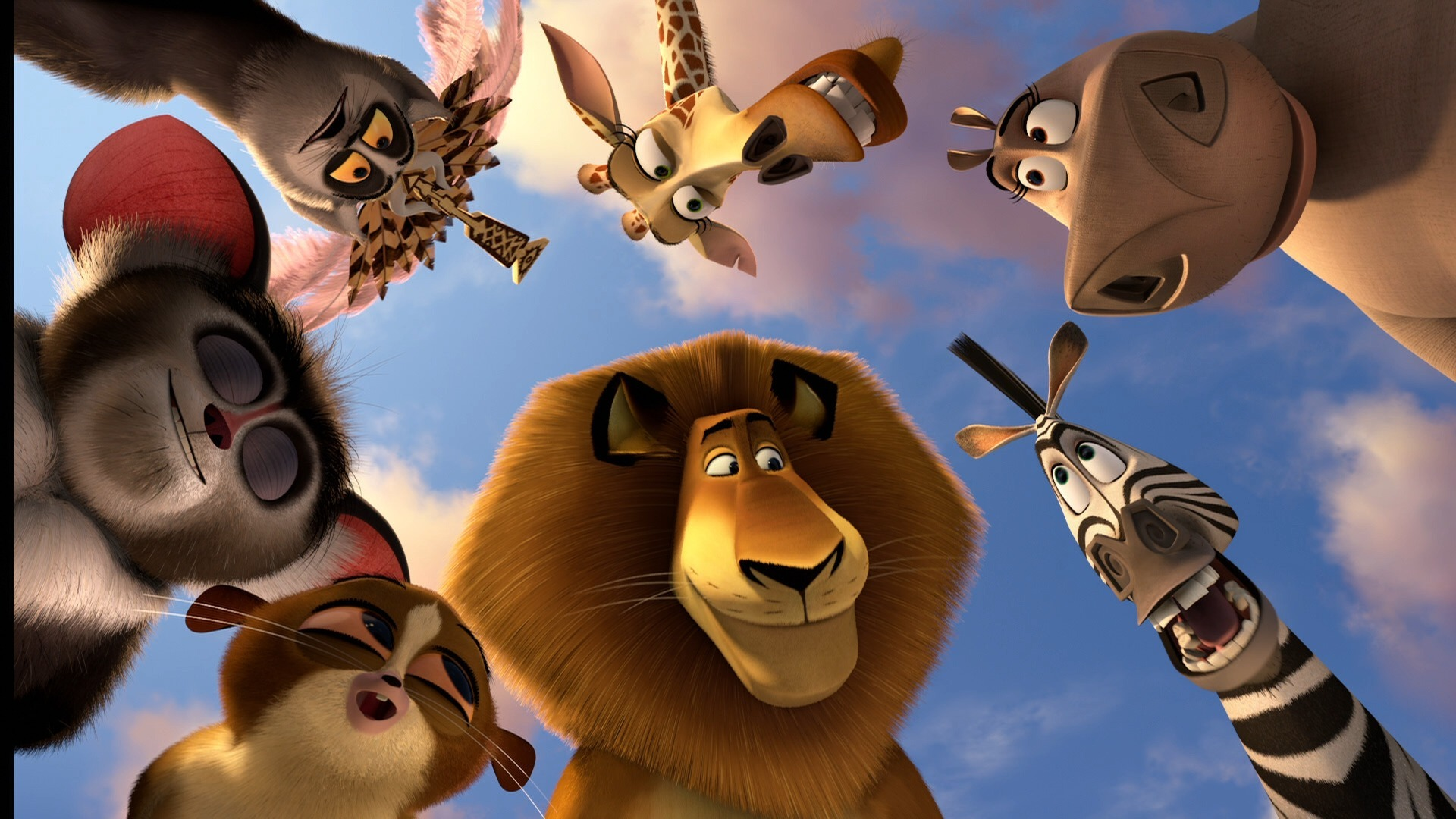 Madagascar 3 Cartoon Characters : Madagascar characters picture wallpaper