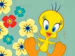 Baby Tweety with Flower Wallpaper