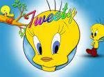 Tweety Bird Wallpaper hd cover