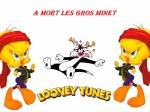 tweety wallpaper looney tunes hd