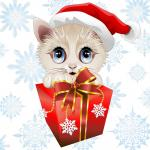 Funny Christmas Cat Cartoon