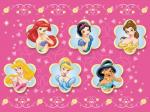 Disney Princesses face cover